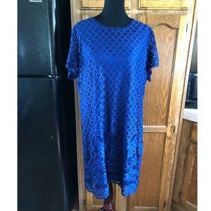Isaac Mizrahi Live Navy Blue Lace Dress XL
